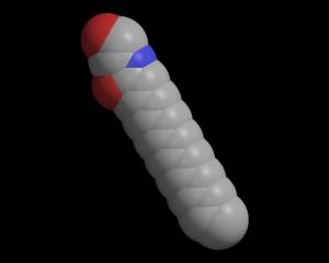 Palmitoylethanolamide, a NAE