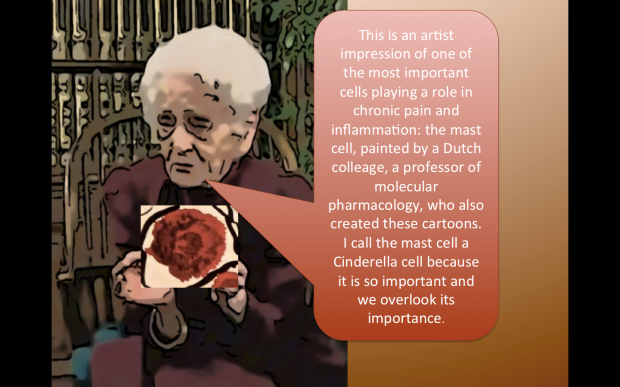 mast cell and Montalcini