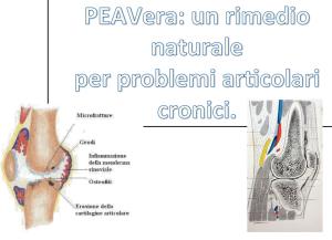 PEAVera: un rimedio naturale per problemi articolari cronici.