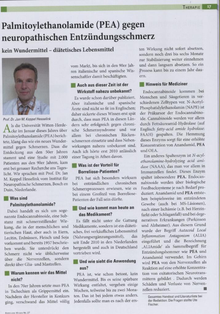 Palmitoylethanolamid gegen Borrelia Schmerz; Borreliose Wissen 2013, no 27