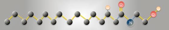 Palmitoylethanolamide (PeaPure)