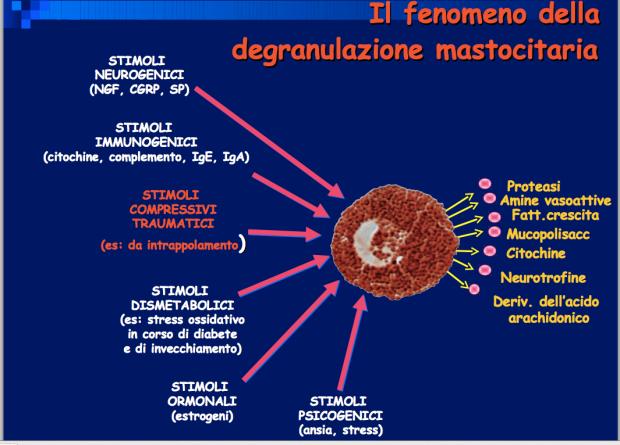 degranulazione mastocitaria