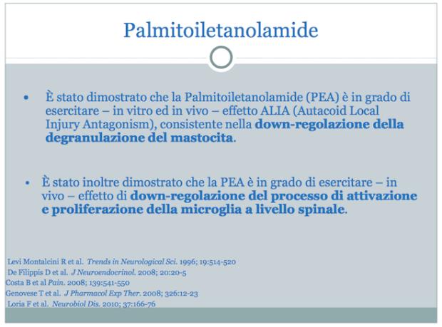 palmitoilethanolamide: downregulazione