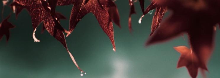 Schermafbeelding 2013-11-29 om 20.30.00