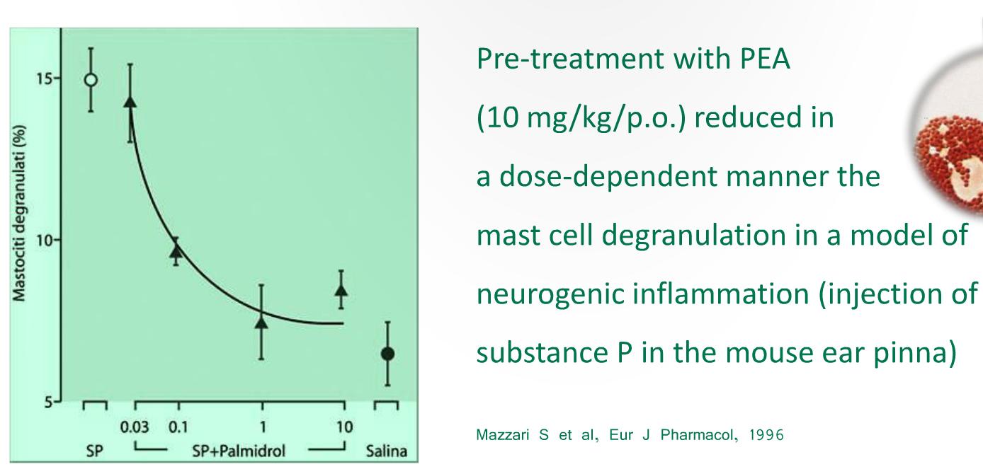 thesis on antioxidant activity