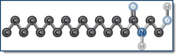 structuurformule-palmitylethanolamide