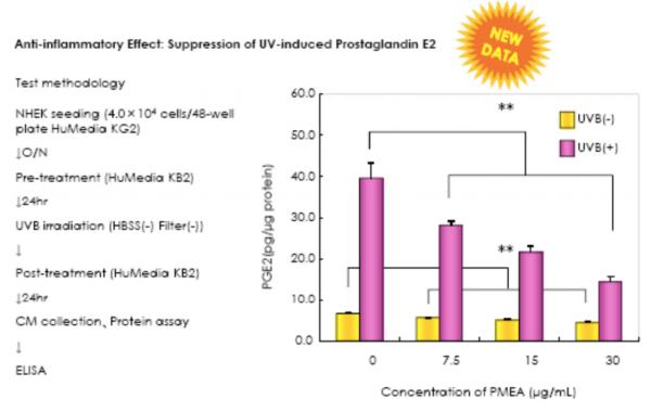 PEA creme beschermend tegen stralingsbeschadiging