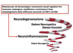 NEUROINFIAMMAZIONE