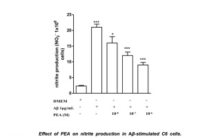 PEA reduces nitrite in an Alzheimer model