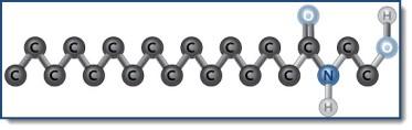 structure-formule of palmitoylethanolamide